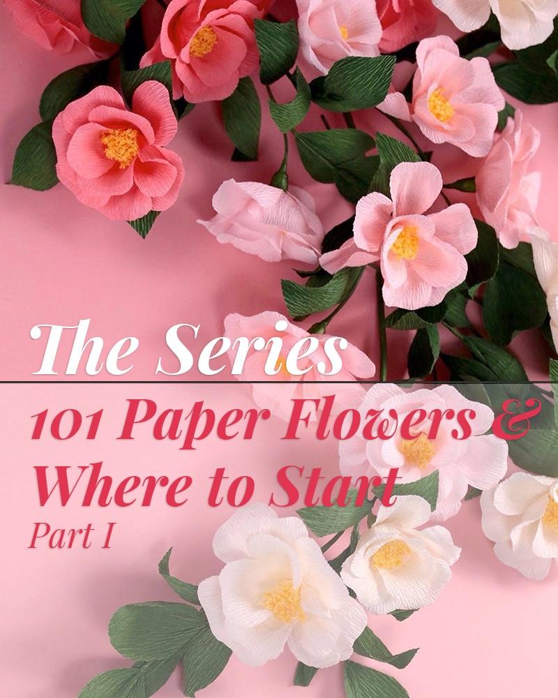 Paperflower-Jennifer-Feature