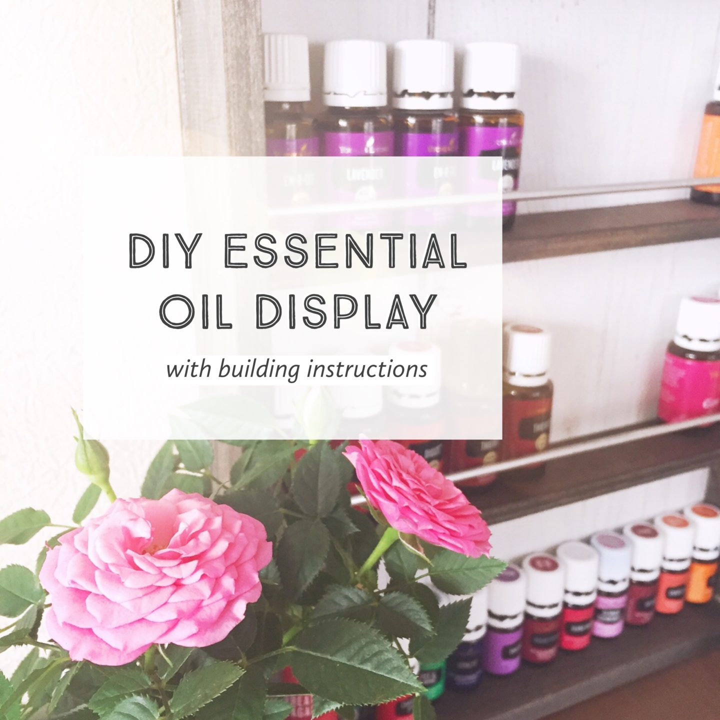 DIY Essential Oil Display